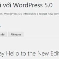 WordPress 5.0 Không Nên Cập Nhật Nếu Bạn là người Mới